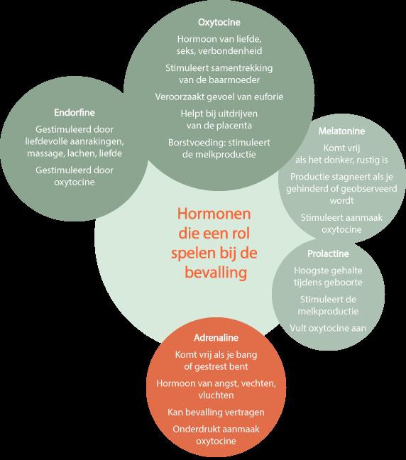 Bevalingshormonen