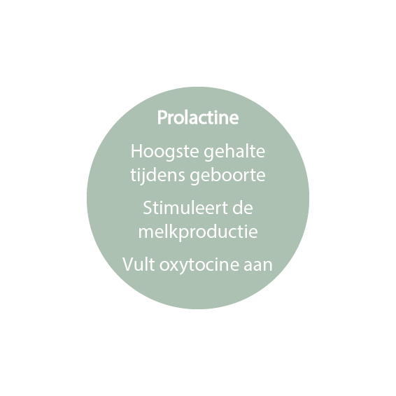 prolactine-doula